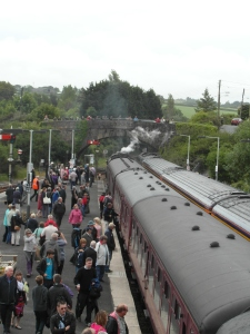 Flock of Passengers