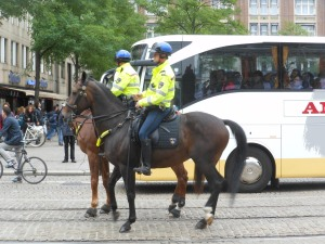 Traffic cop horses stop at red lights