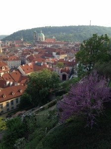 PragueRooftops4-12